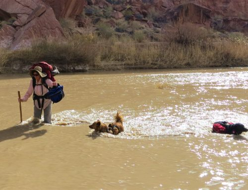 Spring Fling: How to Deal with Moab's Wild Weather Swings
