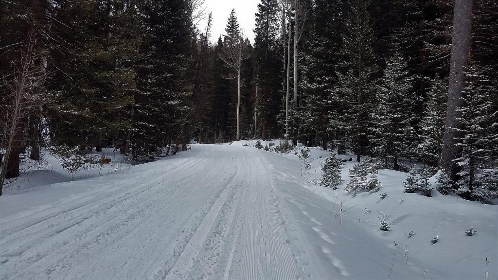 Groomed snow on Geyser Pass Road - La Sal Mountains, UT