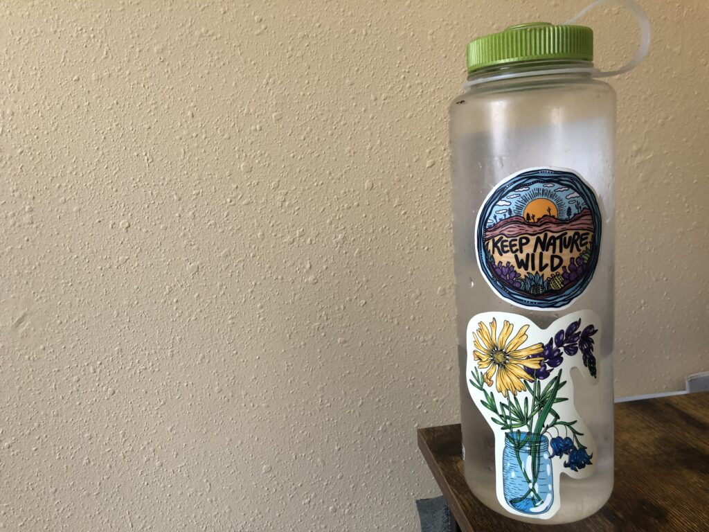 Kaya Lindsay Sticker Water Bottle