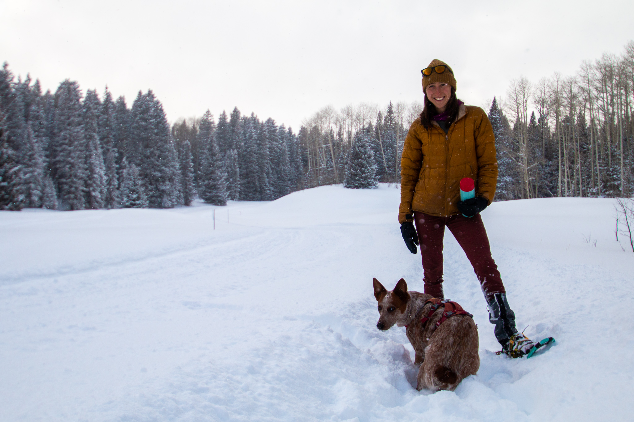 A Beginners Guide to Snowshoeing in the La Sals