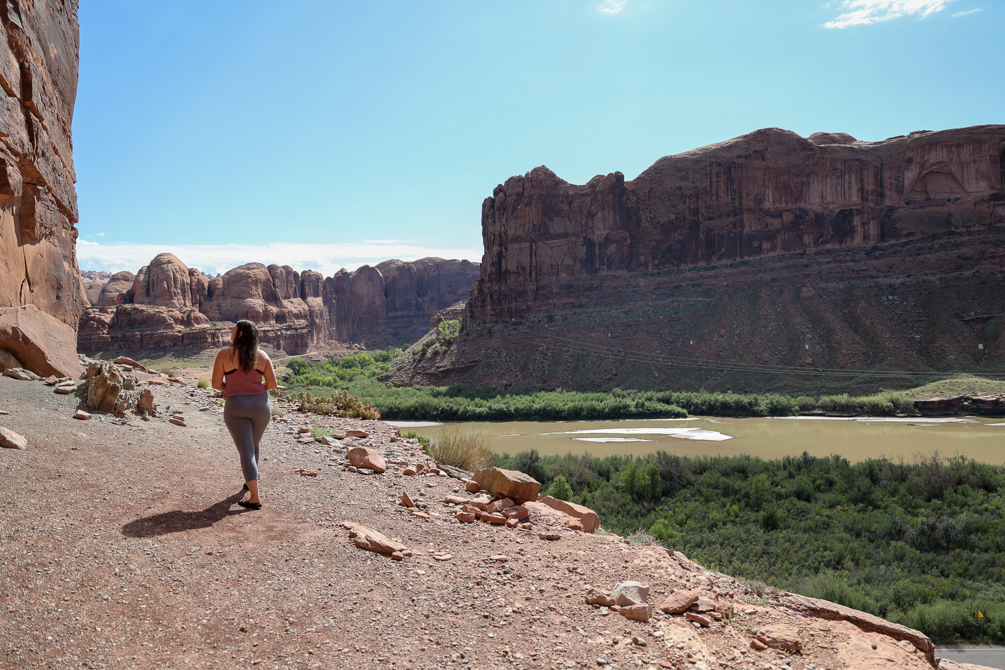 The Best Places to see Dinosaur Tracks In Moab
